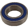Part#  8086 Bearing for CP99 61905 (25x42x9)